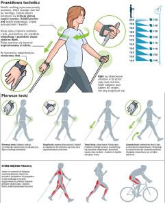 sposób chodzenia nordic walking